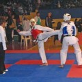 Taekwondo klub Azija Beograd - 1696.jpg