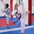 Taekwondo klub Vršac - 1708.jpg