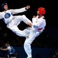 Taekwondo klub Vršac - 1710.jpg