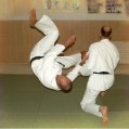 Judo klub Partizan Beograd