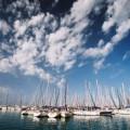 Jedriličarski klub Wind Sailing Novi Sad - 2002.jpg