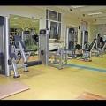Fitnes centar Teretana Kočović Beograd Zemun - 2166.jpg