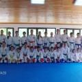 Karate klub Niš - Niš