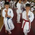 Karate klub Evropa Beograd - 3520.jpg