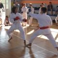 Karate klub Mladost Pančevo - 3869.jpg