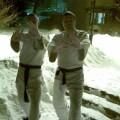 Aikido Klub Yin Yang Vozdovac - 4175.jpg