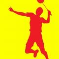 Badminton klub Fanatik Vršac