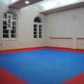 Aikido klub Vitez Banovo brdo - 4699.jpg