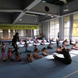 Klub ritmičke gimnastike Pobednik