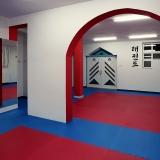 Taekwondo klub Gitros Novi Sad - 5354.jpg