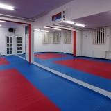 Taekwondo klub Gitros Novi Sad - 5355.jpg