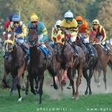 Savez za konjički sport Srbije