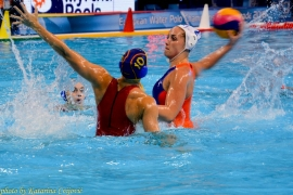 European Water Polo Championship Holland - Spain